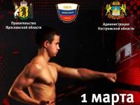 В Ярославле пройдет фестиваль спортивных единоборств