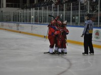 Строительство хоккейного центра в Ярославле отложено на год