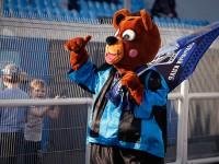 На стадионе «Шинник» покажут матч «Россия – Бельгия» на большом экране