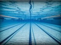 В Ярославле пройдет первенство города по плаванию «Веселый дельфин»