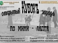 В выходные в Ярославле разыграют Кубок города по мини-лапте
