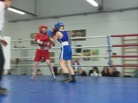 В Ярославле стартовал женский турнир по боксу