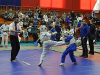 В Ярославле состоялся Всероссийский студенческий турнир по КУДО