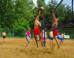 «Ярославские медведи»  сменили паркет на песок