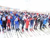 Более тысячи ярославцев приняли участие во всероссийской массовой гонке «Лыжня России – 2017»
