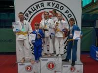 Медали разного достоинства привезли ярославские кудоисты с турнира «North Lion»