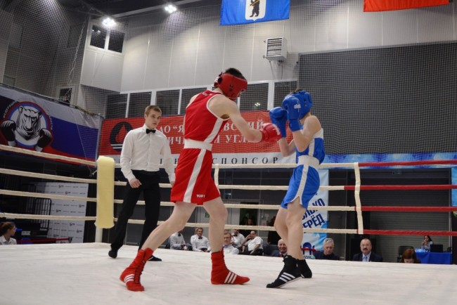 Ярославские боксеры завершили домашний турнир с десятью золотыми медалями