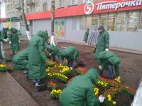 Напротив стадиона «Локомотив» оформлена цветочная клумба