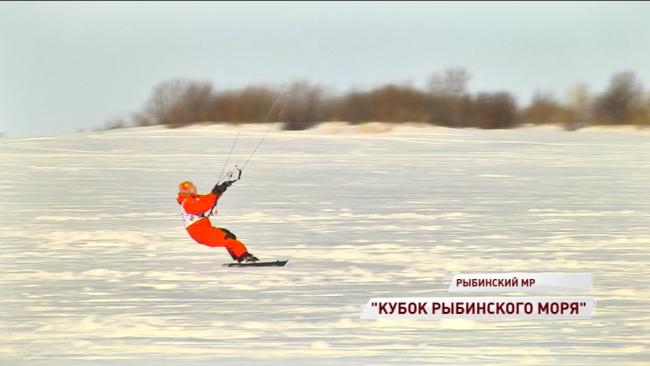 Фото: Первый Ярославский телеканал