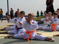 В Ярославле детей и их родителей познакомили с популярными видами спорта